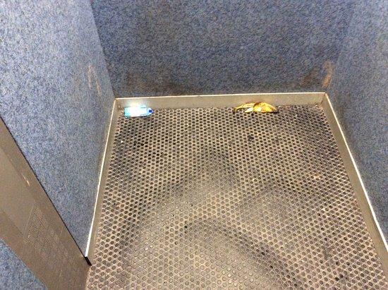 Ascenseur Face A La Reception Dechets A L Arrivee Sol Qui Gondole