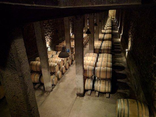 Lujan de Cuyo, Argentina: Cellar at Bodega Benegas