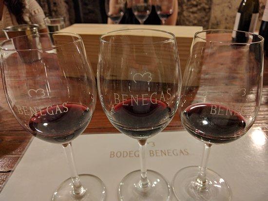 Lujan de Cuyo, Αργεντινή: Tasting at Bodega Benegas