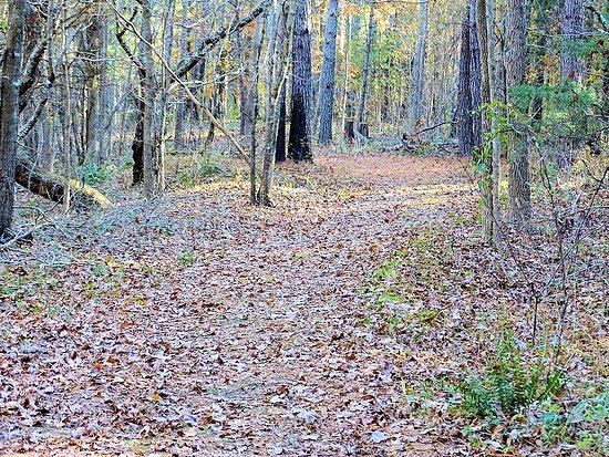 Medoc Mountain State Park