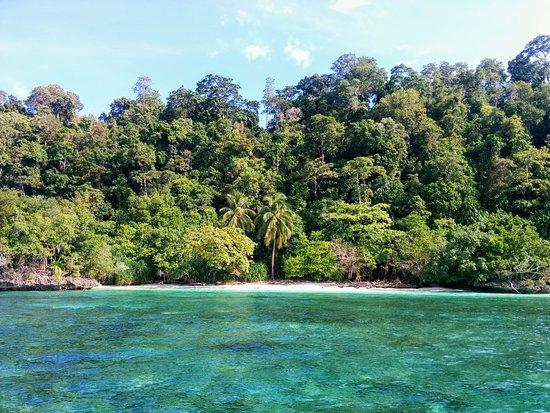 Derawan Islands, Indonesia: IMG_20170118_092521_large.jpg