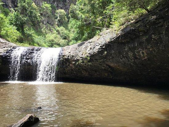 Золотой берег, Австралия: photo3.jpg