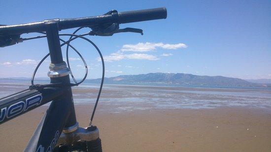 El Poble Nou del Delta, España: disfruta eldelta del Ebro en bicicleta
