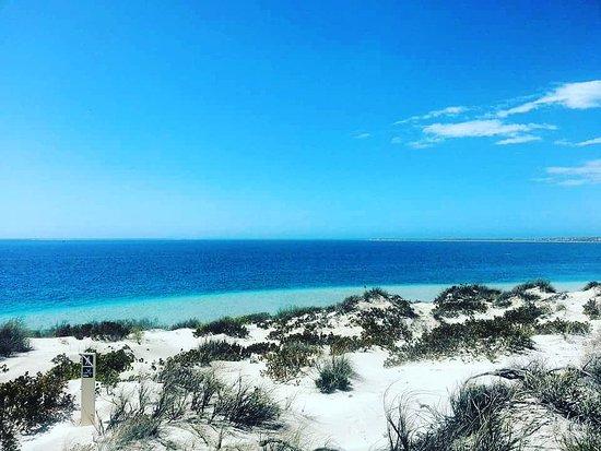 Coral Bay, ออสเตรเลีย: IMG_20170120_193728_349_large.jpg