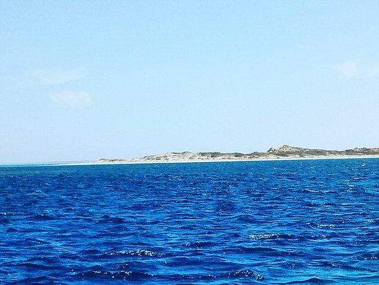 Coral Bay, ออสเตรเลีย: IMG_20170120_152554_327_large.jpg