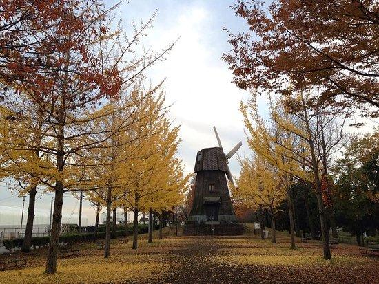 Minumamotoiri Park