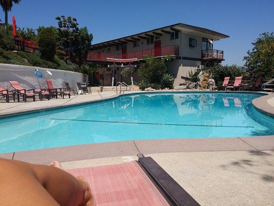 Hollywood Hills Hotel : La piscina del complesso di appartamenti (visibile sullo sfondo)