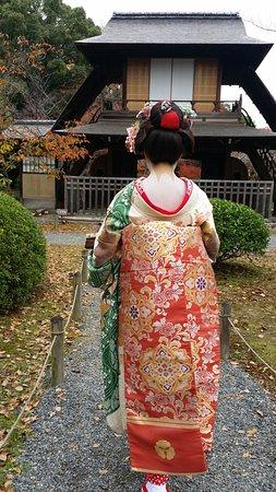 Kyoto Aoi