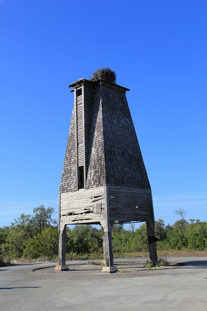Sugarloaf, Флорида: Be sure to look up inside the bat box. There are no bats, but a lovely bird nest on top!