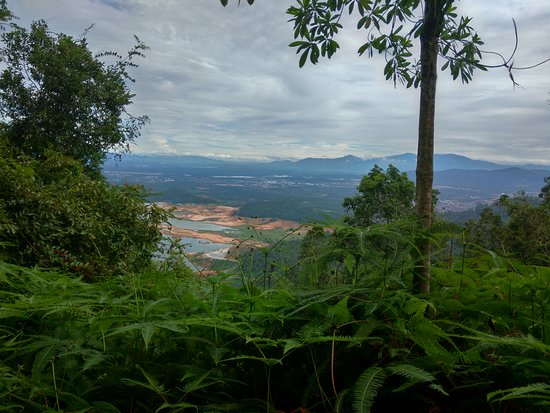 Bukit Mertajam Recreational Forest