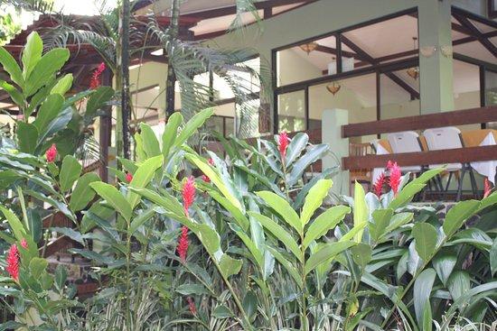 Province of Limon, Costa Rica: sala da pranzo