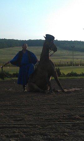 Lazar Equestrian Park: представление