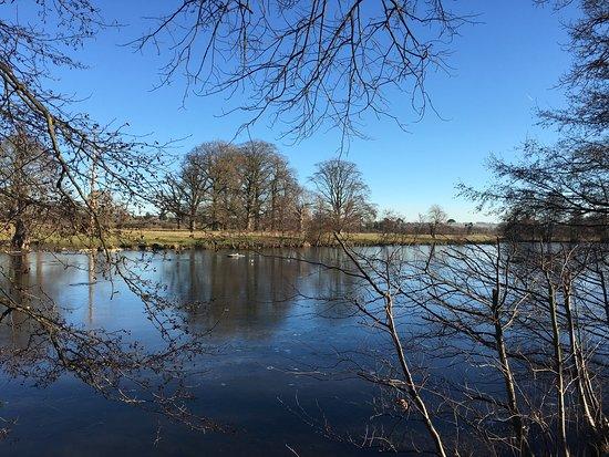 Lenham, UK: Beautiful morning after!