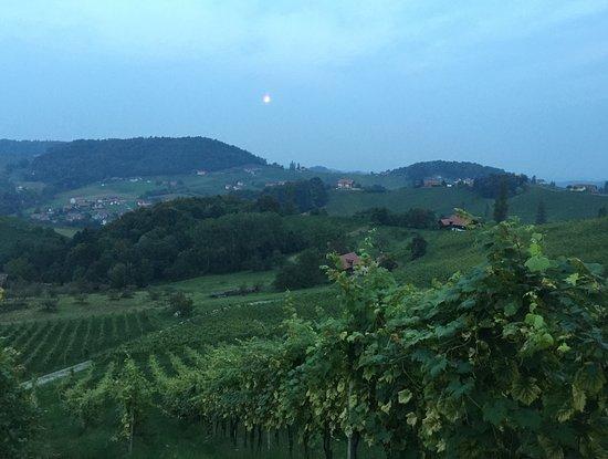 Gamlitz, Austria: Die Abendstimmung vom Garten der Buschenschank ladet ein zu einem guten Glas Wein!