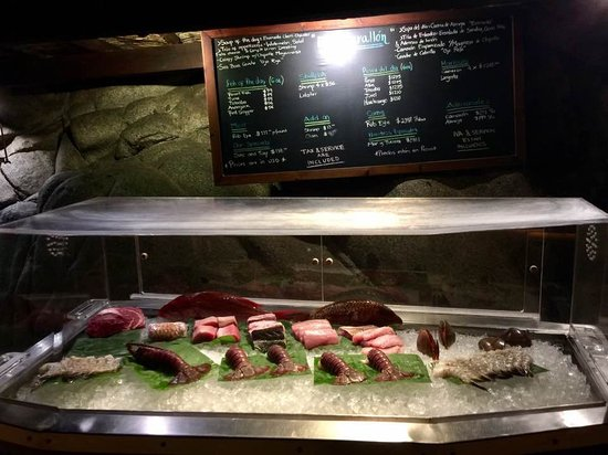 El Farallon: Pick out the fish you want for dinner