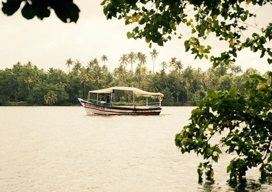 Foto de Chendamangalam