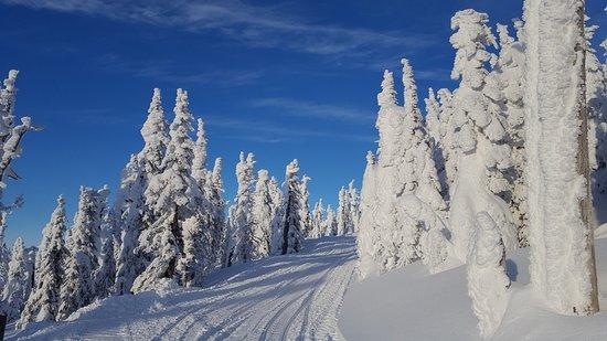 แซนด์พอยต์, ไอดาโฮ: Schweitzer Mountain snowmobile trail