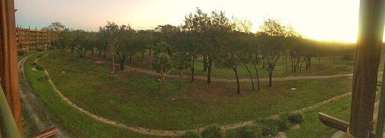 Disney's Animal Kingdom Villas - Kidani Village: photo5.jpg