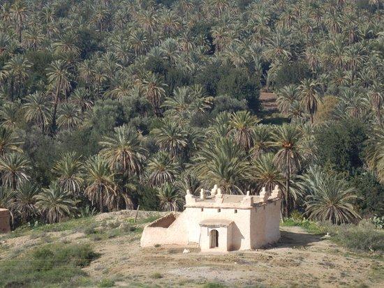 Kasbah of Tiout: vista desde el restaurante