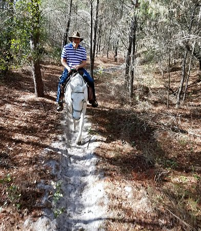 Cactus Jack's Trail Rides : Nice, clear trails.