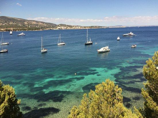 Intertur Palmanova Bay: Utsikten från poolbaren