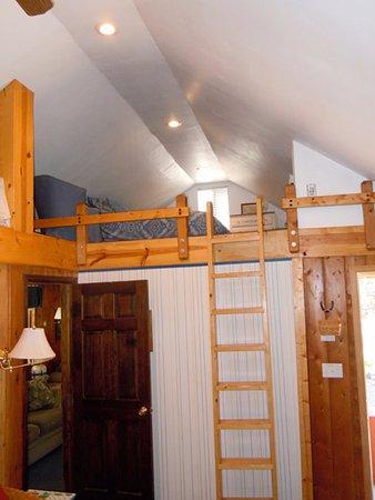 Evergreen, CO : Bountiful Cabin loft