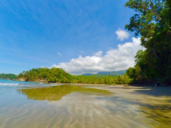 Ballena, كوستاريكا: photo1.jpg
