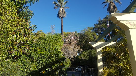 South Pasadena, CA: 20170117_090008_large.jpg