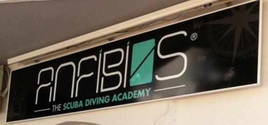 Sant Jordi, España: Ibiza Scuba diving Academy by ANFIBIOS