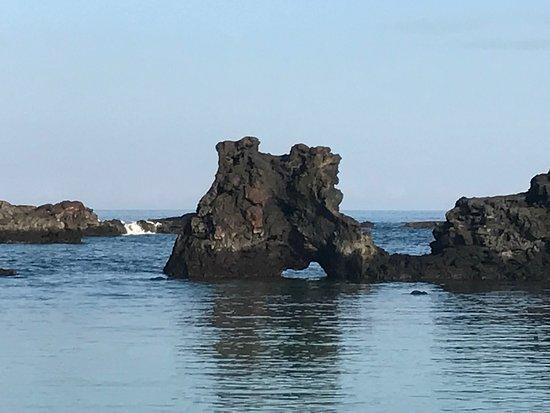 Holualoa, HI: photo3.jpg