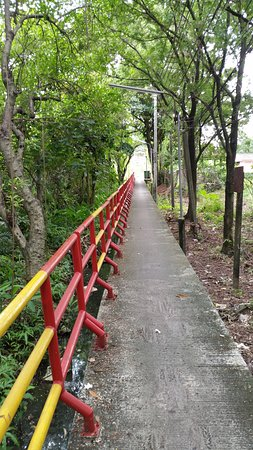 Bang Krachao: One of the many elevated walk ways