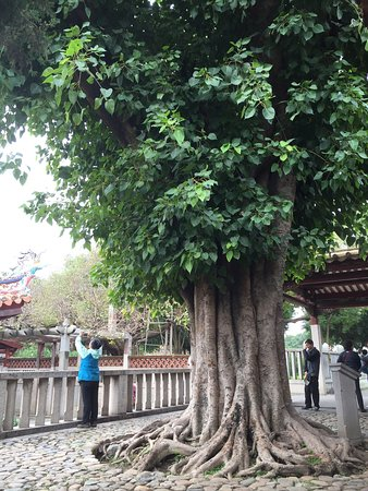 Quanzhou, Cina: photo5.jpg