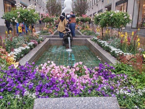 Channel Gardens Tripadvisor