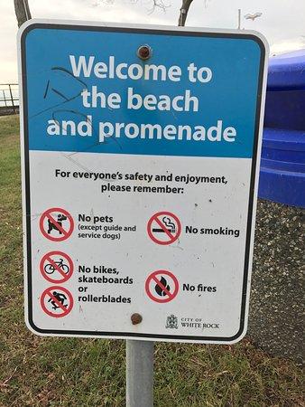 No dogs allowed in white rock public promenade and pier