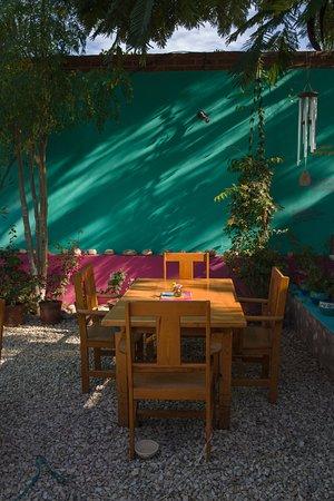 Rumi Garden: Garden