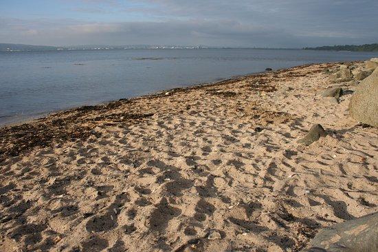 Jordanstown Loughshore Caravan Park: Long beach.