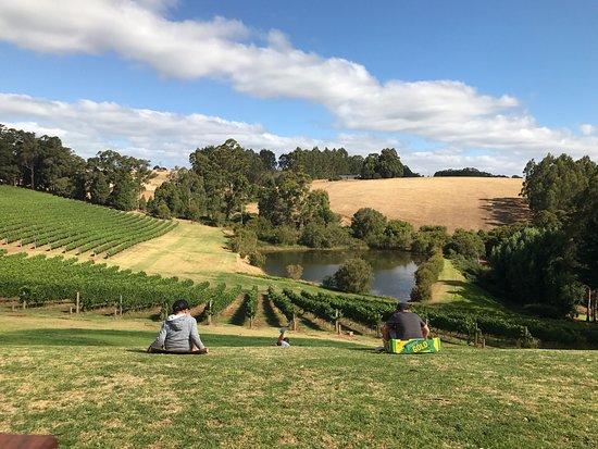 Pemberton, Australia: photo1.jpg
