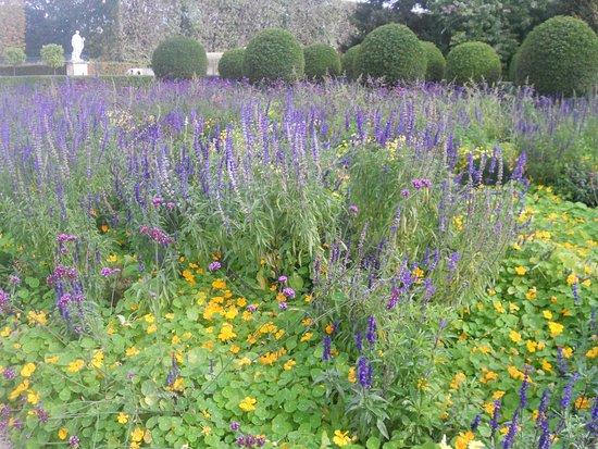 Sceaux, France: statue, gardens of lavendar, trees, yellow flowers