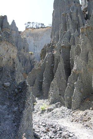 Вайрарапа, Новая Зеландия: View looking north