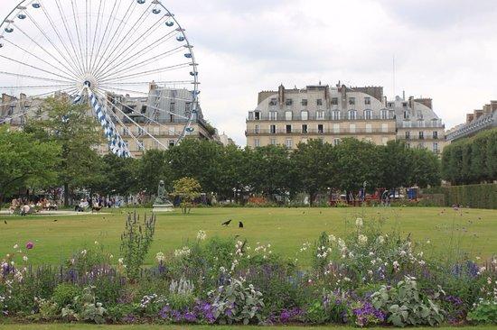 Beautiful flowers in Jardin des Tuileries - Bild von Jardin des ...