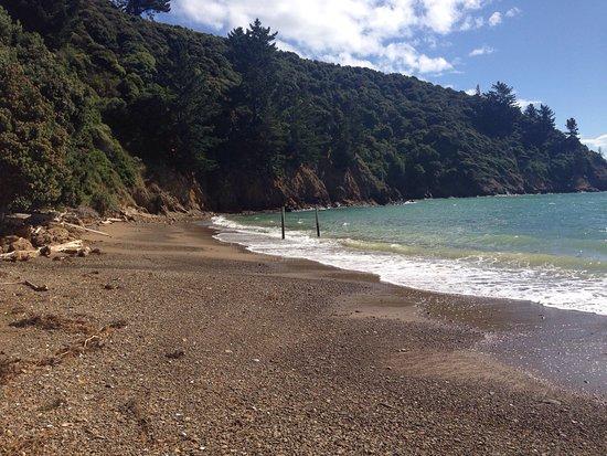 Ngaio Bay, นิวซีแลนด์: photo0.jpg