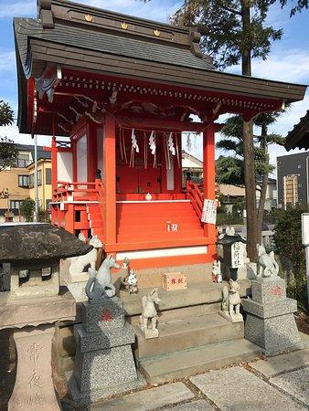 Warabi, ญี่ปุ่น: photo2.jpg