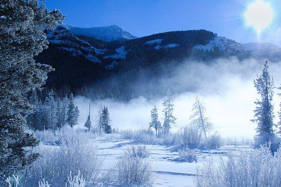 Gardiner, MT: Winter Wonderland