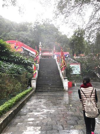 Tam Dao Accommodation
