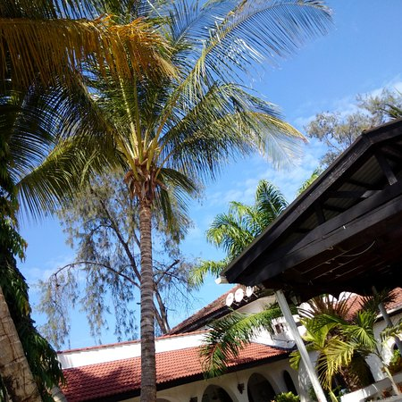 Jangwani Seabreeze Resort: Beautiful Hotel Grounds