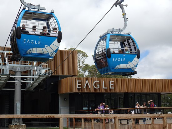the gondolas passing each other at the summit of Arthurs seat.