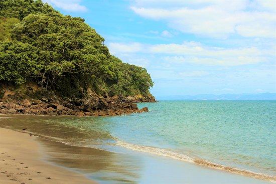 Whakatane, New Zealand: McEwans Bay, Whale Island