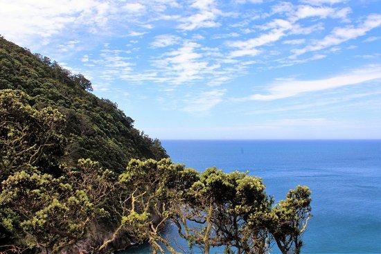 Whakatane, New Zealand: Views from the Saddle, Whale Island