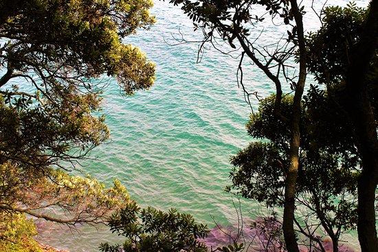 Whakatane, New Zealand: On our way to Sulphur Bay, Whale Island