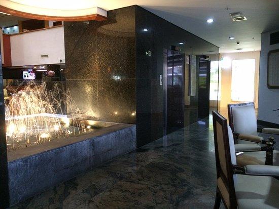 Ouro Minas Palace Hotel: Fonte luminosa